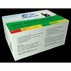 Флокфикс в картриджах(8*125) 1 кг (Химия Chemoform)